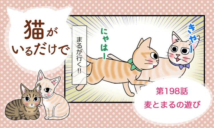 【まんが】第198話:【麦とまるの遊び】まんが描き下ろし連載♪ 猫がいるだけで(著者:暁龍)